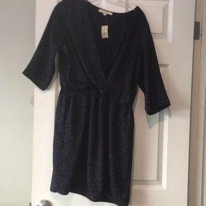 Ann Taylor Loft Dress Size 14P